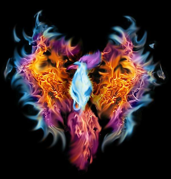 Logo Phoenix rounded